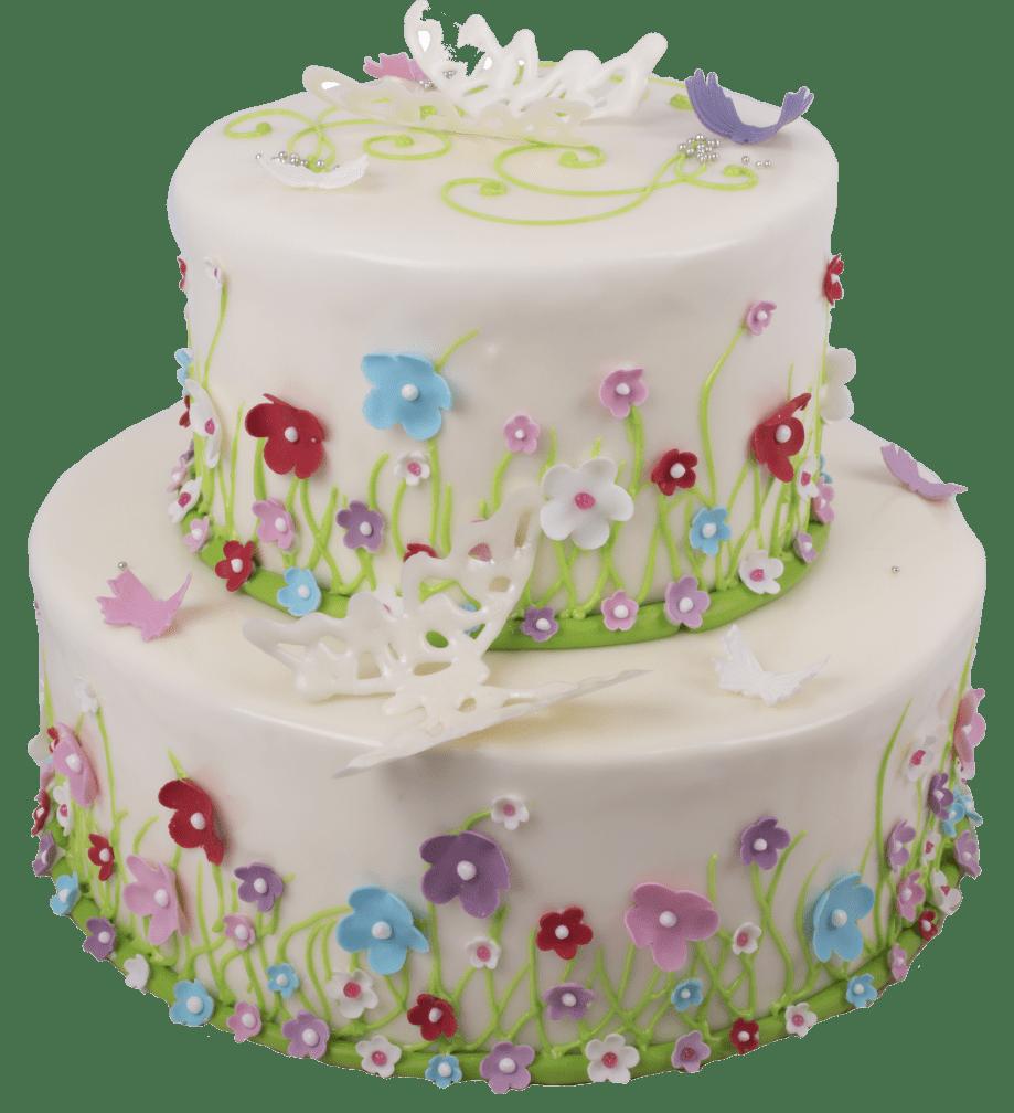 Торт праздничный-29 1