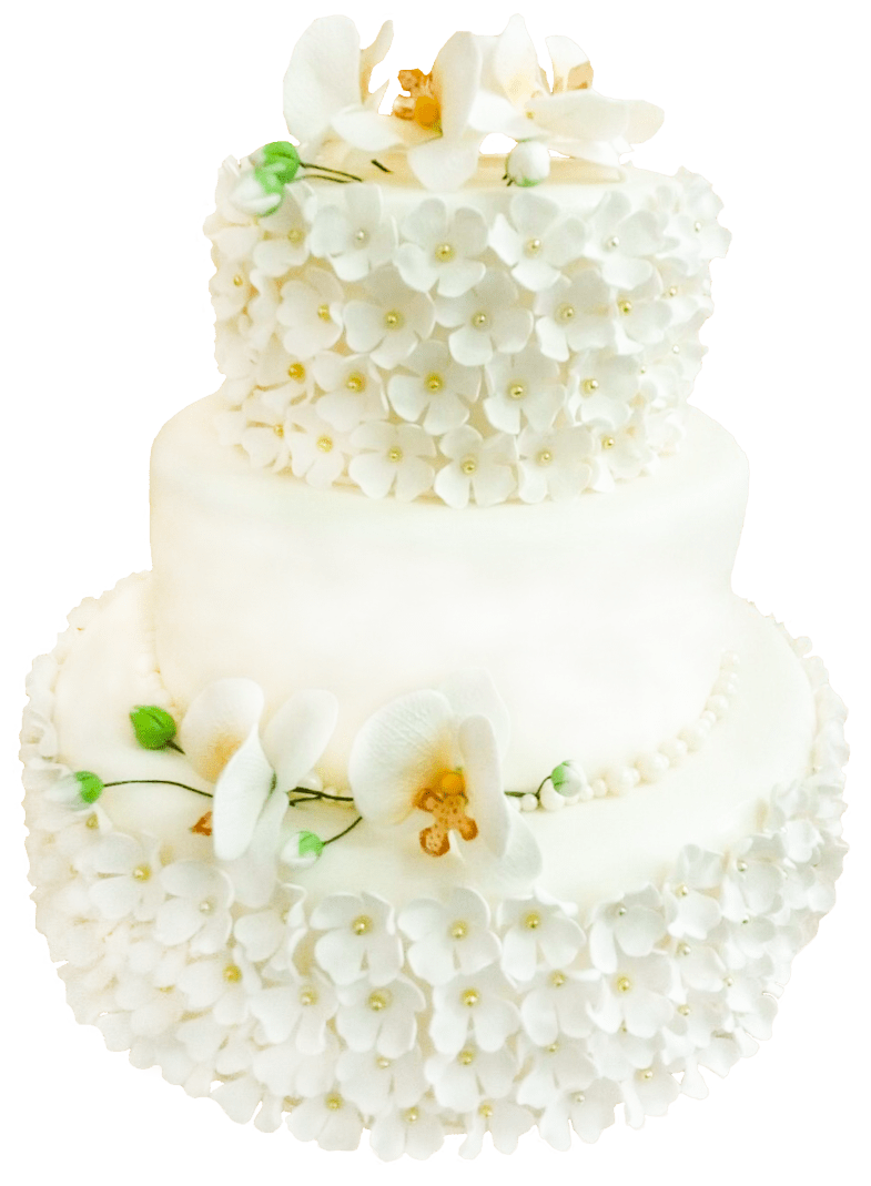 Торт эксклюзивный-27 1